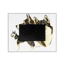 Sib Husky Multi dark Picture Frame