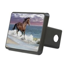 Dreamer_on_beach Hitch Cover