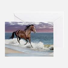Dreamer_on_beach Greeting Card