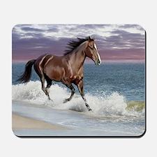 Dreamer_on_beach Mousepad