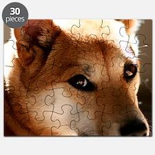 shebapic Puzzle