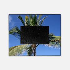 Maui Palm Picture Frame