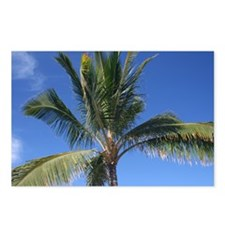Maui Palm Postcards (Package of 8)
