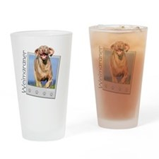 poloroid3 Drinking Glass