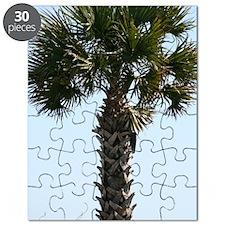 Hilton Head Palm Puzzle