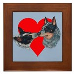 Australian Cattle Dog Kiss Framed Tile