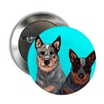 Australian Cattle Dog Pair Button