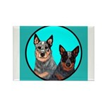 Australian Cattle Dog Pair Rectangle Magnet (10 p