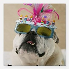 """Party Animal Square Car Magnet 3"""" x 3"""""""