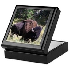 Solitary Buffalo Keepsake Box