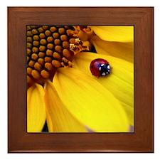 Ladybug on Sunflower Heart Framed Tile