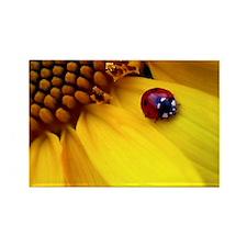 Ladybug on Sunflower Heart Rectangle Magnet