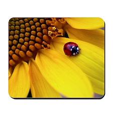 Ladybug on Sunflower Heart Mousepad
