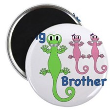Big Brother of Twin Girls Magnet