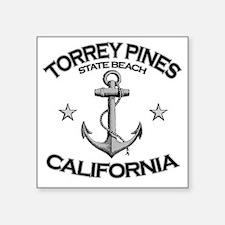 "TORREY PINES STATE BEACH CA Square Sticker 3"" x 3"""