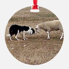 Nap vs Ram Ornament