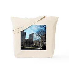 100_0417 Tote Bag