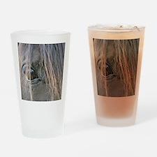 Spiffys eye Drinking Glass