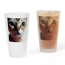 ds162mm Drinking Glass