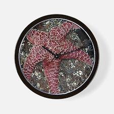 EGSeaStar8X10NB Wall Clock