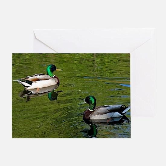 Duck dance Greeting Card