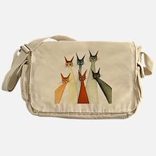 seville bigger Messenger Bag