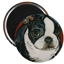 boston pup squared Magnet