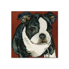 "boston pup squared Square Sticker 3"" x 3"""