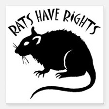 "RatsHaveRights Square Car Magnet 3"" x 3"""