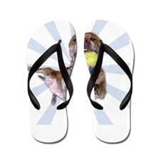 Have a Great Pit Bull Day FINAL dark Flip Flops