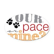 yourpaceo Oval Car Magnet