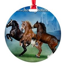 Horsephotos Ornament