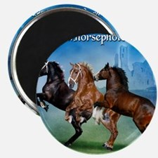 Horsephotos Magnet