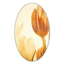 tulip ipad_case Decal