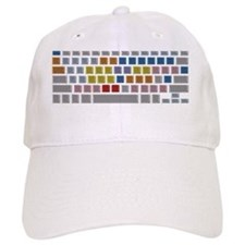Avid Keyboard Baseball Cap