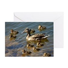 Big ducky family Greeting Card