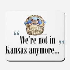 We're not in Kansas Mousepad