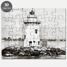 288-09-2 Puzzle