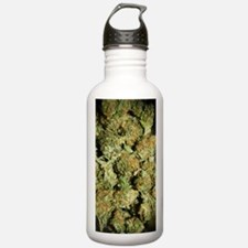 IMG_5154 copy Water Bottle