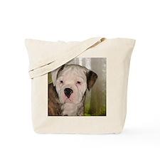 tank_tile3 Tote Bag