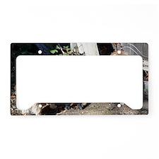 DSC_0004 License Plate Holder