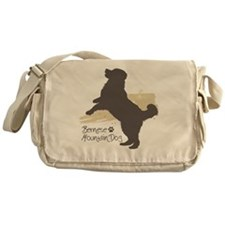 jump3 Messenger Bag