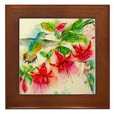 Hummingbirds in Fuschia Garden 2 Framed Tile