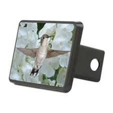 Hummer on Phlox Hitch Cover
