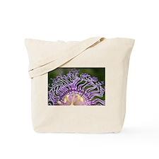Passiflora Evatoria Tote Bag