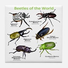 Beetles of the World Tile Coaster