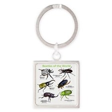 Beetles of the World Square Keychain