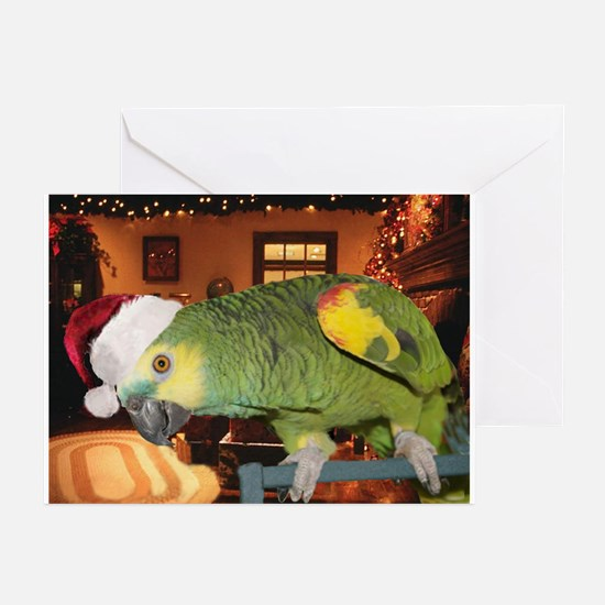Cute Pet/ Kona The Amazon Greeting Cards