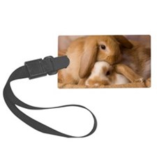 tancuddleBunniesIMG_2055 Luggage Tag