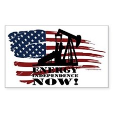 Energy Now Decal
